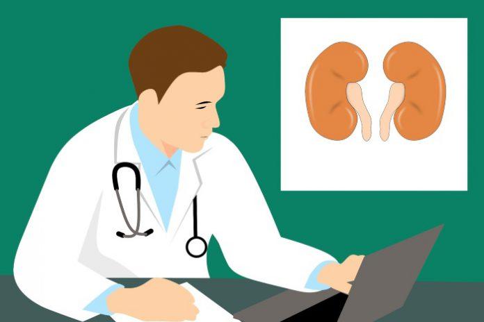 benessere reni