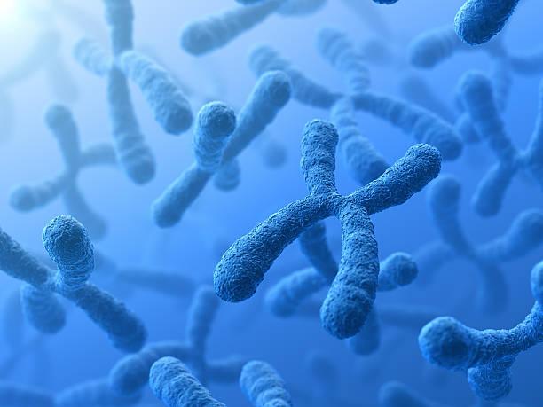 l'analisi citogenetica